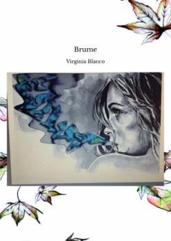 Brume, recueil de poésie de Virginia Blanco